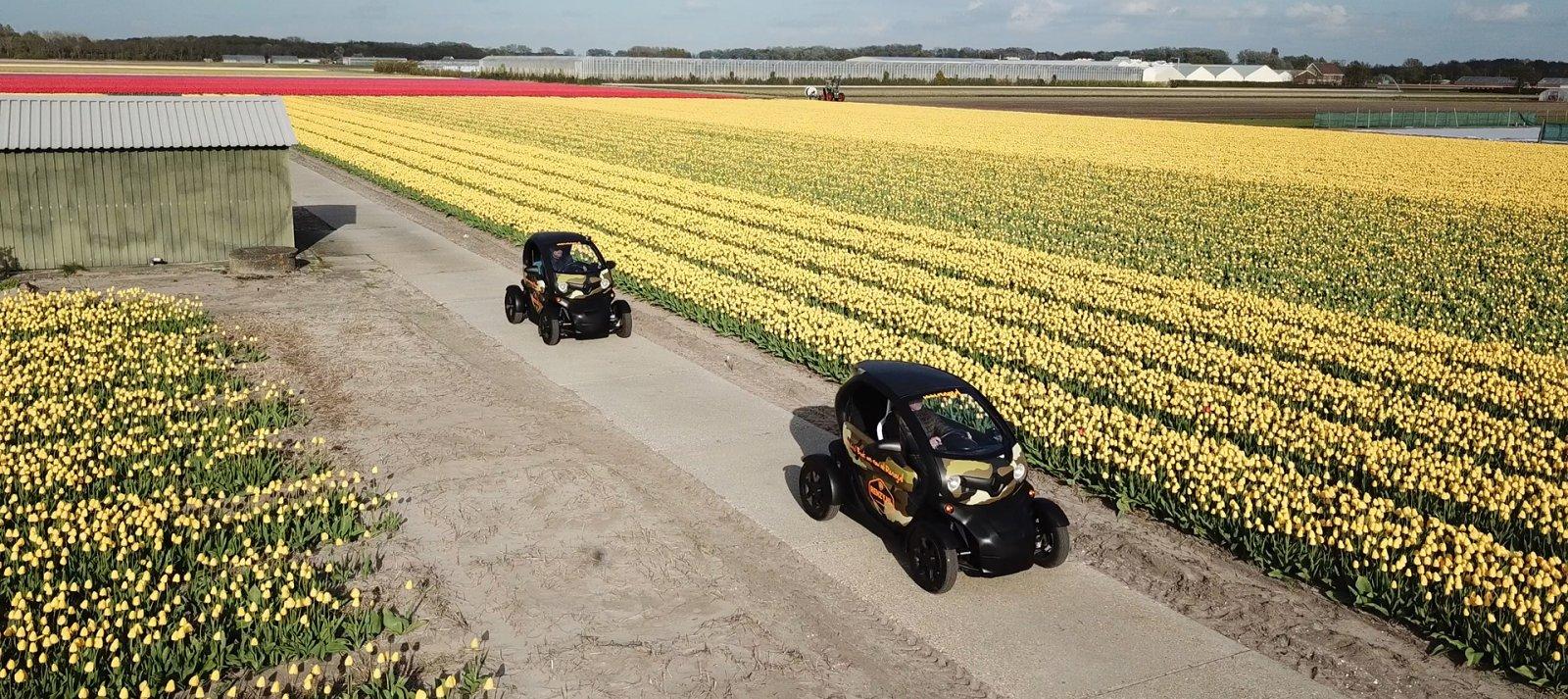 Met een Renault Twizy toeren door de Tulpenvelden